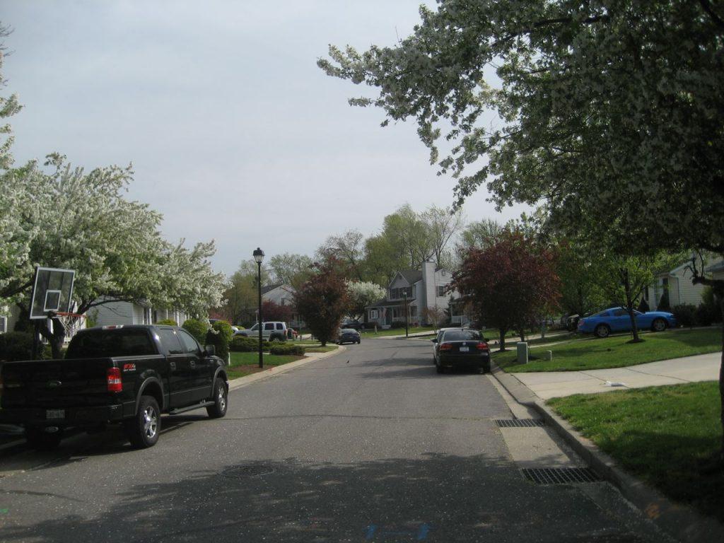 Cobbler Lane