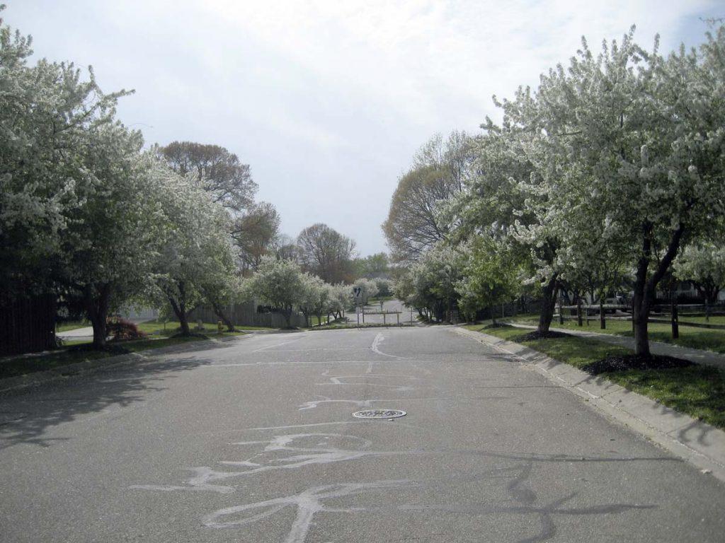 Countryside Drive